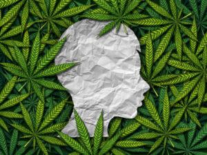 Legal Marijuana and Child Abuse Neglect NJ
